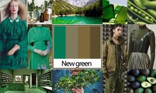 2020初秋色彩:新生绿