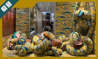 【櫥窗陳列】香港店鋪櫥窗的新鮮風潮與解讀